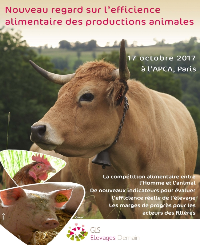 efficience alimentaire productions animales 650